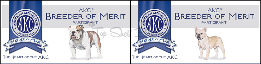 akc-breeder-merit