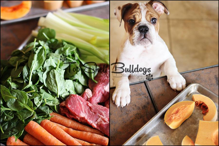 bulldog food